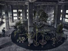 bureau a install temporary garden inside vietnamese warehouse