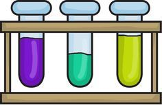 Testable questions and more...how to set up the science fair