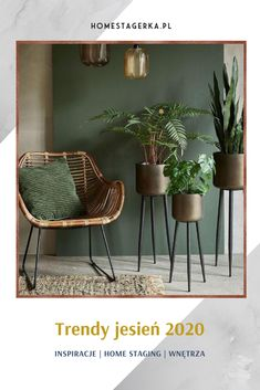 Dining Chairs, Trends, Decorating, Architecture, Fall, Plants, Furniture, Home Decor, Kitchen