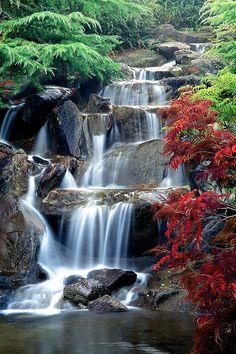 Autumn - Waterfall, Van Dusen Botanical Garden, Vancouver, BC