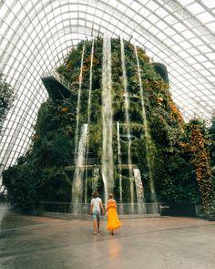 Add to Trip! Add to Trip! Add to Trip! Add to Trip! Add to Trip! Add to Trip! Add to Trip! Singapore Guide, Singapore Travel Tips, Singapore Photos, Places To Travel, Places To Go, Couple Travel, Gardens By The Bay, Wanderlust Travel, Travel Light