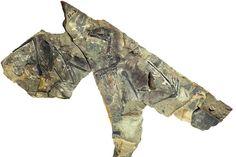 """Le fossile de Yi qi, un petit dinosaure découvert en Chine et présenté dans une étude de la revue """"Nature"""", le 29 avril 2015."""