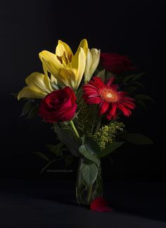Bouquet with Gerbera, Lilliim and Red Roses. Photography by Serena Carminati.