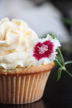 Coconut cupcake with mango whipped cream frosting...