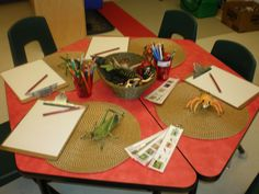great provocation for observational drawings...included our mini field guides so they could identify and label their insect.
