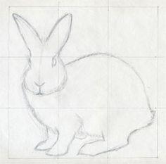 draw a bunny like an artist......art ed central