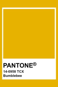 PANTONE 14-0958 TCX Bumblebee #pantone #color Pantone Color Chart, Pantone Colour Palettes, Pantone Orange, Pantone Tcx, Tru Colors, Closet Colors, Color Balance, Colour Board, Color Swatches