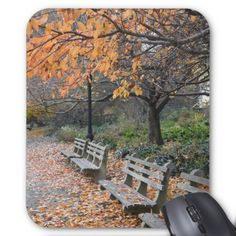 New York City Photography Autumn in Riverside Park Mouse Pad - autumn gifts templates diy customize