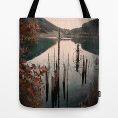 Dismal reflections Tote Bag by Fenia Stavra - $22.00