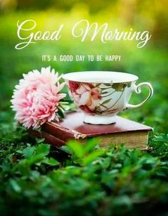 Good Morning Thursday Images, Good Morning Gif Images, Good Morning Friends Images, Good Morning Beautiful Pictures, Good Morning Images Flowers, Good Morning Roses, Good Morning Cards, Good Morning Picture, Good Morning Greetings
