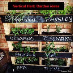 diy-Vertical-Herb-Garden-ideas-2015.jpg (600×600)
