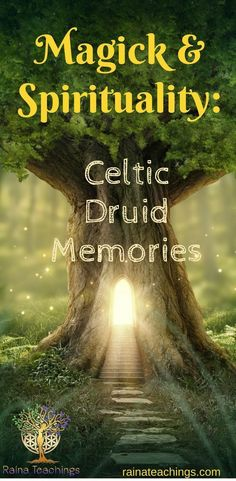 Trance channel Lori Camacho talks about her druid memories & awakening | rainateachings #magick #spiritualawakening #celticdruid Spiritual Enlightenment, Spiritual Path, Spiritual Awakening, Spirituality, Psychic Development, Spiritual Development, Celtic Druids, Celtic Paganism, Witchcraft For Beginners