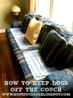 Dog Keeps Going On Bed