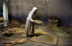 An Ethiopian worker collects spilled green coffee beans in the giant warehouse of the Keffa Export Coffee Processing Plant February 21, 2007 in Addis Ababa, Ethiopia. Ethiopia exports more than 120,000 metric tons of green coffee beans per year, and one in four Ethiopians is employed within the coffee business.  Copyright:Scott Nelson 2007