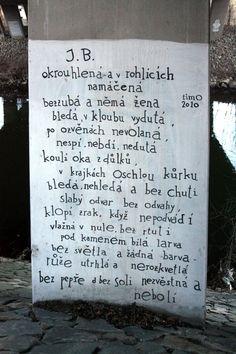 Timo - galerie na břehu Svratky - 2010