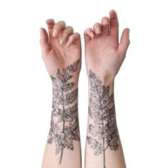 Nature tattoo. Stunning ferns on the arms.