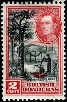 Chicle is a natural gum that was traditionally used in making chewing gum and other products. It is collected from several species of Mesoamerican trees in the Manilkara genus. Here is an image of a stamp depicting chicleros bleeding a tree for chicle and boiling it to the correct thickness, engraved and printed by Bradbury, Wilkinson & Co., and issued for use in British Honduras (Belize) on February 14, 1938, Scott No. 116.