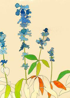 plants - Juriko Kosaka