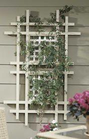 One terrific trellis Woodworking Plan, Outdoor Backyard Structures