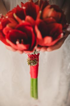 8 Best Deko Mit Amaryllis Images On Pinterest Floral Arrangement