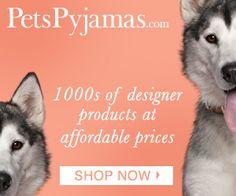 My Fashion House: Pet Fashion