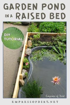 Can't dig? Build a pond in a raised garden bed using these step-by-step instructions.