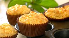 Cheesy Corn Muffins: dead-easy to make, and a real crowd pleaser! Savory Muffins, Corn Muffins, Savory Snacks, Muffin Pan Recipes, Snack Recipes, Savoury Recipes, Cheesy Corn, Cheesy Recipes, Breakfast Items