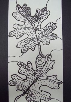 Zentangled leaves- maybe a follow up for fourth grade pen and ink?