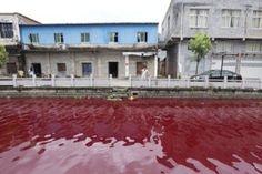 Rio na China fica vermelho misteriosamente e intriga ambientalistas