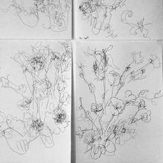 24 Hour Drawing Project — Hannah Bertram