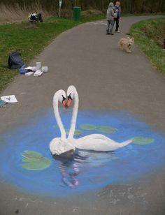 50 More Breathtaking 3d Street Art (paintings)  Swans Artist Edgar Muellar
