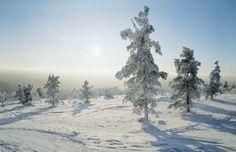 Holidays in #Saariselka, #Lapland