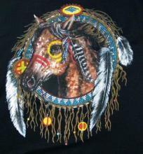 WAR HORSE INDIAN DREAMCATCHER CROSS STITCH PATTERN