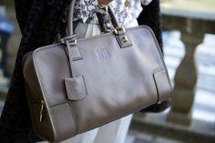 bag: Loewe Amazona