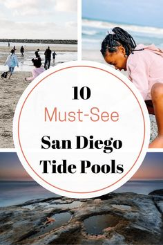 San Diego Tide Pools; Guide to the Most Incredible 10! Sunny San Diego has more to offer than just looks! Pay a visit to the unique critters and plants tucked away in the crevices of their amazing tide pools. #sandiego #tidepools #visitsandiego California Attractions, California Travel Guide, California With Kids, La Jolla Shores, Visit San Diego, Marine Reserves, San Diego Houses, California National Parks, Tide Pools