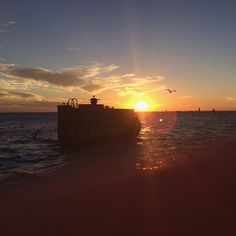 Mallory Square  |  Here's to sunsets, new friends, and a cat man in Key West last night. #latergram #vsco #keywest #florida #sunset #ocean - http://instagram.com/jennchambless