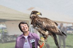 I was able to hold a juvenile Bald Eagle. She was heavy! See the Raptors at the Brampton Fall Fair in September  http://bramptonfair.com