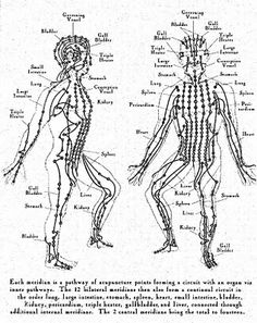 92 Best Rolfing: Anatomy Trains, Polarities images in 2019