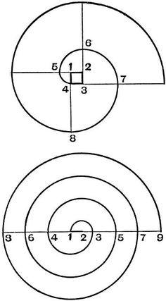 "anitanh: "" Found in the Internet Archive by AnitaNH "" - Salvabrani Fibonacci Golden Ratio, Fibonacci Spiral, Geometric Designs, Geometric Shapes, Divine Proportion, Metal Bending Tools, Metal Bender, Sacred Geometry Art, Bild Tattoos"