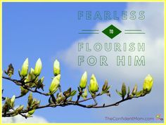 Flourish for Him - Bible Study - How I pushed past my fears to bring women together to bloom and flourish through Bible study in my home. Tiny Beach House, Christian Homemaking, I Am Scared, Flourish, Studying, Ministry, Confident, Activities For Kids, Encouragement