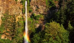 Multnomah Falls & Multnomah Falls Lodge. Hiking and stunning views of the second highest year-round waterfall in the United States. A not to be missed sight near Portland.