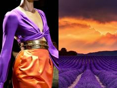 Sunset over Lavender fields
