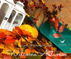 October 2015. Autumn decorations in Club House - Villaverde Bar&Restaurant - Golf Club Udine, Fagagna, Italy.