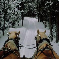 winter sleigh ride.......reminds me of the one my husband and I went on in Steamboat Colorado. There is something about snow that is so romantic!