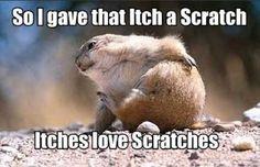 I'm itchy!