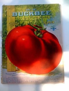 1923 HW Buckbee seed and plant guide!! 176 pages.  Lots of great info and illustrations!!