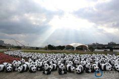 直擊!1600隻紙貓熊抵達台灣 快閃現身台北各大景點
