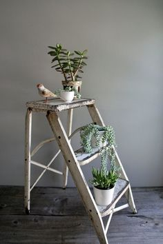 Repurpose an old ladder to be a plant stand. Indoor Garden, Indoor Plants, Home And Garden, Garden Deco, Deco Nature, Deco Floral, Cactus Y Suculentas, Home And Deco, Green Plants