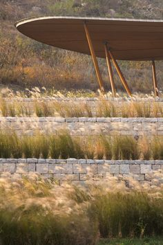 Image 4 of 16 from gallery of Vanke Tsing Tao Pearl Hill Visitor Center / Bohlin Cywinski Jackson. Photograph by Nic Lehoux Landscape Structure, Landscape Materials, Landscape Walls, Urban Landscape, Landscaping Supplies, Garden Landscaping, Tropical Landscaping, Wetland Park, Landscape Architecture Design