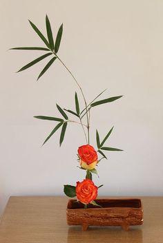 Bambú y rosas